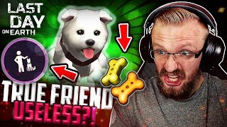 IS TRUE FRIEND DOG WORTH IT??? (Treats) - Last Day on Earth: Survival