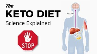 Introduction To The Ketogenic Diet: Science Explained