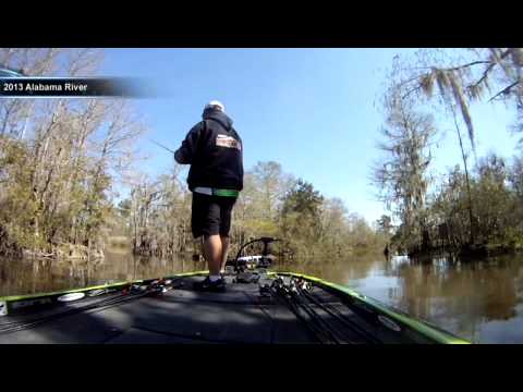 The Livewell shows new Elite video