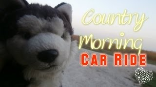 Country Morning Car Ride