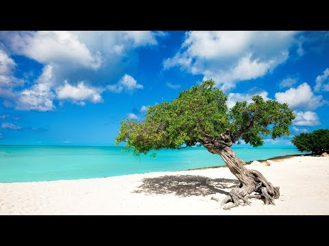 Aruba - Leisurely Edit - Sassy FPV