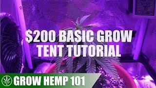 Basic Grow Tent & Indoor Timelapse Grow Tutorial