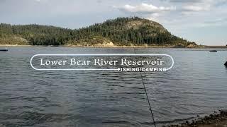 Lower Bear River Reservoir Fishing Camping
