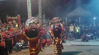 SAMBOYO PUTRO lagu wong edan kuwi bebas & kepranan live mojoseto gondang
