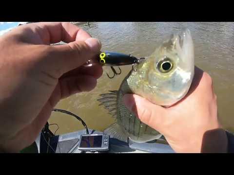 San Jacinto River, Texas Fishing