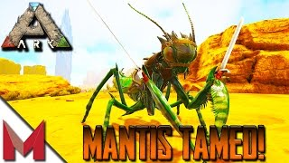 TAMING A MANTIS / MANTIS TAME -=- ARK: SCORCHED EARTH GAMEPLAY -=- S1E5
