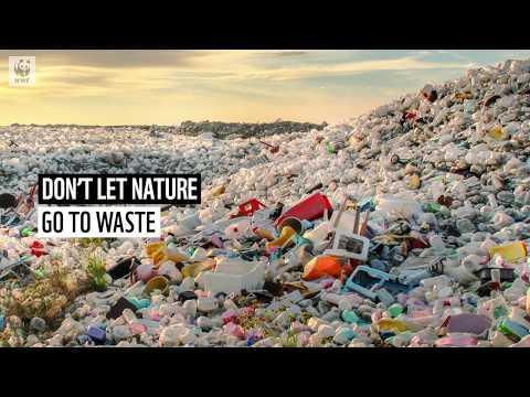 9 Eco-Friendly Alternatives for the Worst Single-Use Plastics ♻️ | WWF-Australia
