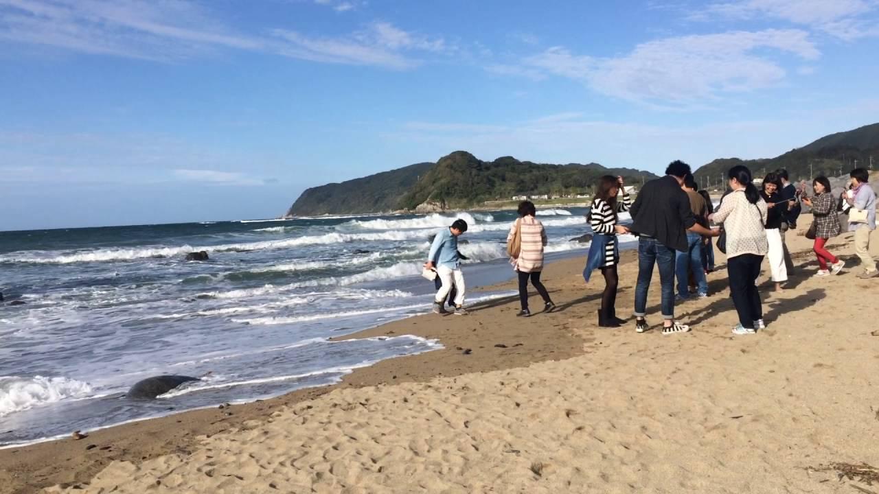 日本九州福岡系島 二見浦夫婦巖 - YouTube