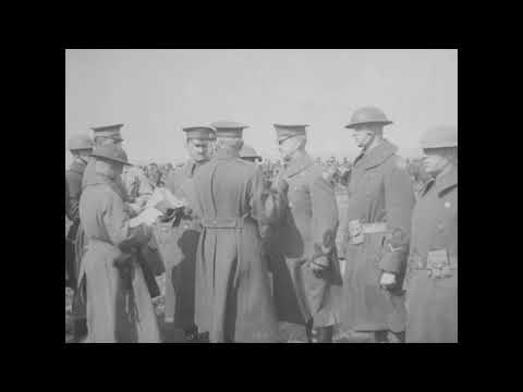 Post Armistice Training, 80th and 81st Divisions [1918-1919]
