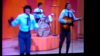 Watch Young Rascals Good Loving video