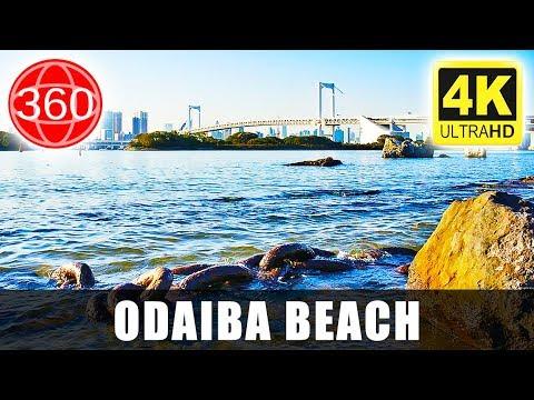 ☑️ [360°VR] 🗾 Watching Tokyo by Odaiba Beach, Tokyo | 4K Virtual Reality | Japan 360