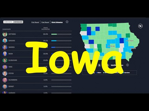 1.1%-for-andrew-yang-in-iowa-caucus-@-62%-of-votes-seems-incredibly-fishy