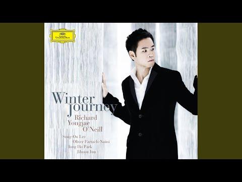Schubert: Winterreise, D. 911 - Der greise Kopf