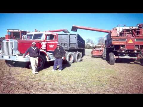 ASA Farms Spotlight, Chesapeake, VA