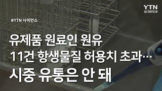 유제품 원료인 원유 11건 항생물질 허용치 초과...시…