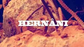 Hernâni - Kemosabe (Remix) (Video) (2014)