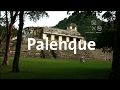 Video de Palenque