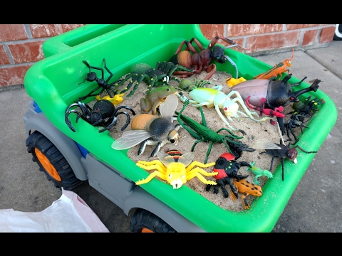 All Types Of Creepy Bugs Toys And Sounds/Frogs/learn Insects - Scary Bugs Creepy Spiders Kids toys