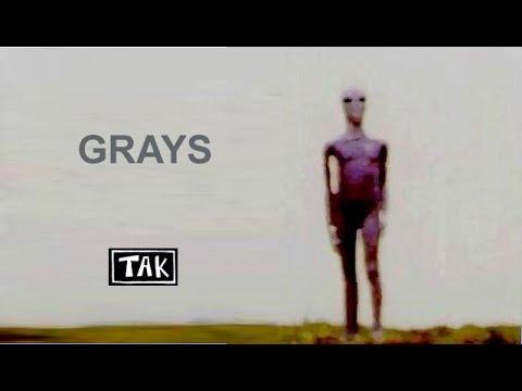 Tak - Os extraterrestres Grays - Setembro 2016