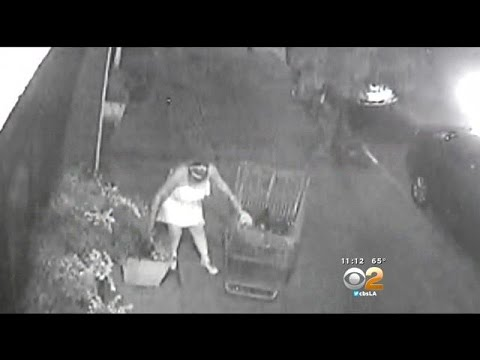 Caught On Camera: Woman Steal's Bakery's Flowers