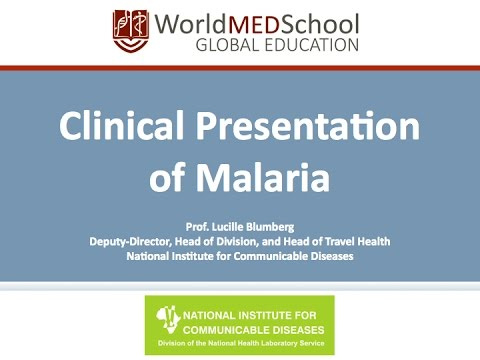 Clinical Presentation of Malaria by Lucille Blumberg, National Institute for Communicable Diseases