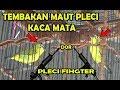 Lomba Pleci Duel Exotis Pleci Kaca Mata Keluarkan Tembakan Maut  Mp3 - Mp4 Download