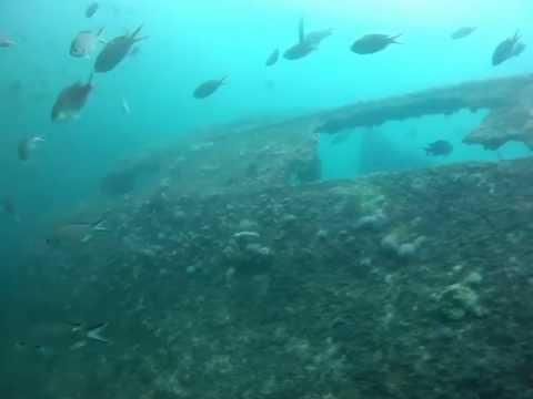 Aruba Scuba Dive - Antilla Wreck 1/12/13