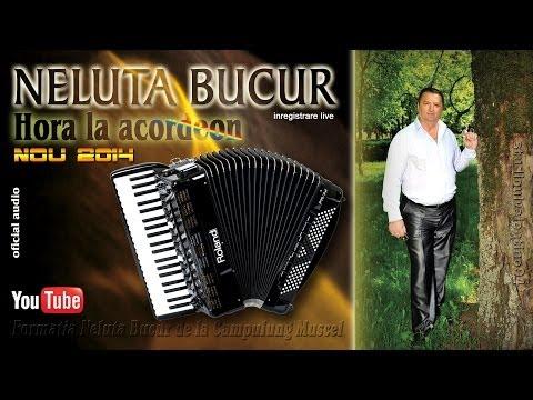 NELUTA BUCUR . Hora la acordeon (oficial audio)