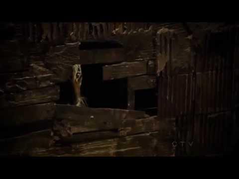 Castle    4x10 Cuffed Tiger scenes 1