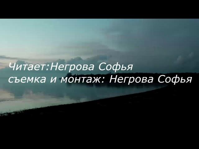 Изображение предпросмотра прочтения – СофьяНегрова читает произведение «Есть в осени первоначальной...» Ф.И.Тютчева