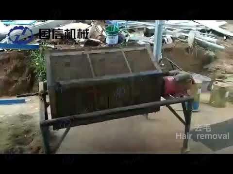 Chinese Ginger Hot Air Dryer Machine