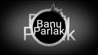 Banu Parlak-Narim Yarim ( DJWolumeVevo)
