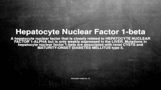 Medical vocabulary: What does Hepatocyte Nuclear Factor 1-beta mean