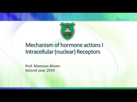 Mechanism Of Hormone Actions I   Intracellular (nuclear) Receptors