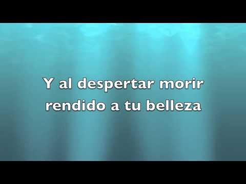 Tú Y Yo - Ricky Martin With Lyrics