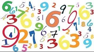 Школьная математика: модуль числа