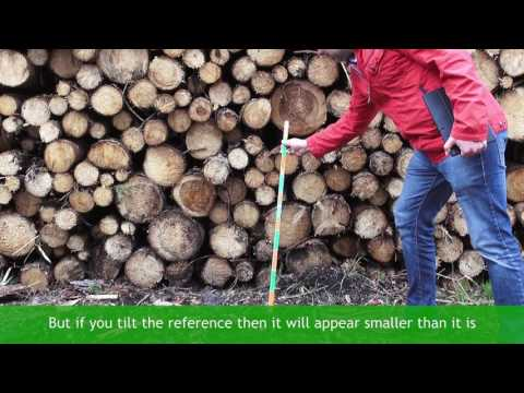 1  First time – How to measure logs quickly and accurately video ENG Timbeter