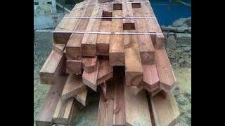 как выбрать дерево для строительства дома
