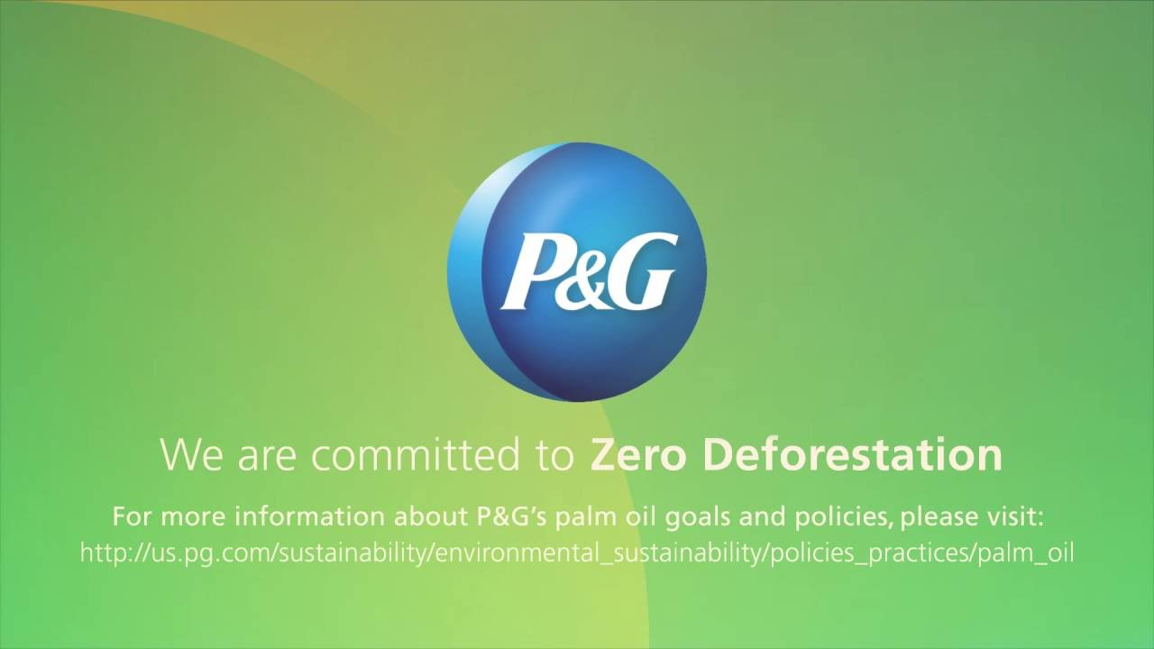 P And G >> Committed To 100 Sustainable Palm Oil P G