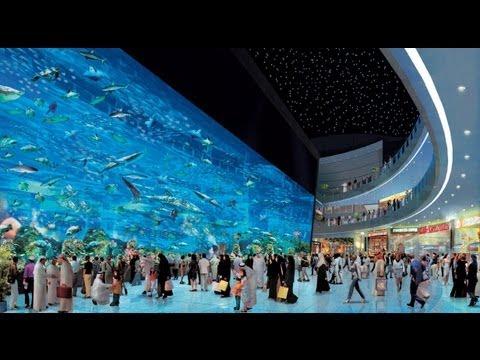 Dubai Aquarium & Underwater Zoo - Dubai Mall - YouTube