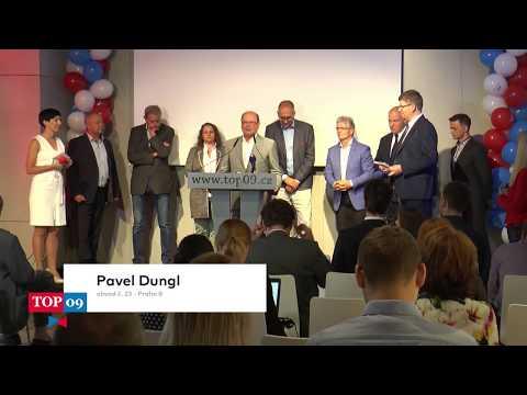 Dungl: Role Senátu je důležitá a nezpochybnitelná