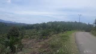 Download Padang Tarok #sijunjung SUMBAR