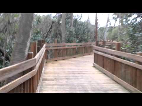 A boardwalk trail at Celebration, FL.