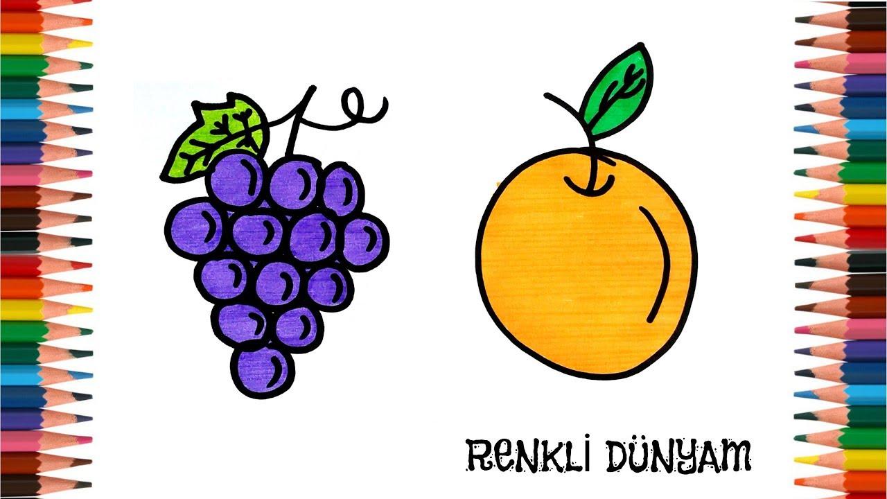 Meyve Nasıl çizilir üzüm Ve Portakal çizimi How To Draw Fruit