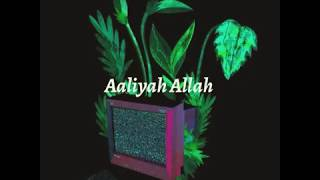 Aaliyah Allah - Baby