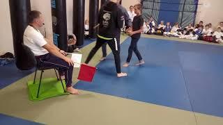 LKKL karate referee and judges training. Обучение карате судьеи LKKL.