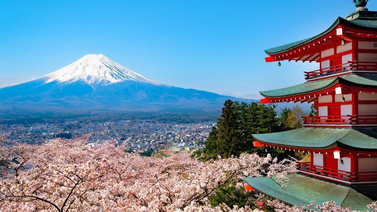 ١٠ حقائق مذهلة عن اليابان