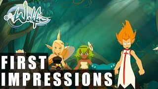 Wakfu Free to Play Gameplay | First Impressions HD