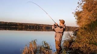 Ловля ЩУКИ на Оке осенью Рыбалка на спиннинг с берега Ловля щуки на джиг в Подмосковье