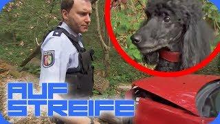 Hund führt Polizei zum Opfer: Wie kam es zum Unfall? | Auf Streife | SAT.1